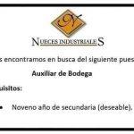 Recluta: nuecesindustriales.com